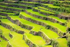 Πεζούλια ρυζιού στις Φιλιππίνες Καλλιέργεια ρυζιού στο Βορρά Στοκ φωτογραφία με δικαίωμα ελεύθερης χρήσης
