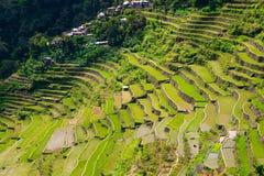 Πεζούλια ρυζιού στις Φιλιππίνες Το χωριό είναι σε μια κοιλάδα amo Στοκ Εικόνα