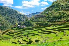Πεζούλια ρυζιού στις Φιλιππίνες Το χωριό είναι σε μια κοιλάδα amo Στοκ Εικόνες