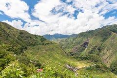 Πεζούλια ρυζιού Banaue στις Φιλιππίνες Στοκ Φωτογραφία