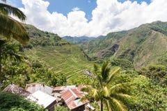Πεζούλια ρυζιού Banaue στις Φιλιππίνες Στοκ Εικόνες