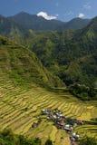 Πεζούλια ρυζιού Banaue, Φιλιππίνες Στοκ εικόνες με δικαίωμα ελεύθερης χρήσης