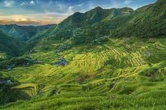 Πεζούλια ρυζιού Batad Στοκ Εικόνες