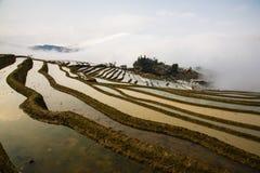 Πεζούλια ρυζιού Hani Στοκ φωτογραφία με δικαίωμα ελεύθερης χρήσης