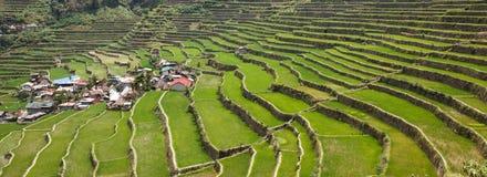 Πεζούλια τομέων ρυζιού Batad, επαρχία Ifugao, Banaue, Φιλιππίνες στοκ εικόνα με δικαίωμα ελεύθερης χρήσης