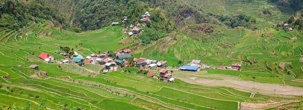 Πεζούλια τομέων ρυζιού Batad, επαρχία Ifugao, Banaue, Φιλιππίνες στοκ εικόνες με δικαίωμα ελεύθερης χρήσης