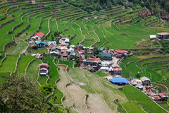 Πεζούλια τομέων ρυζιού Batad στην επαρχία Ifugao, Banaue, Φιλιππίνες Στοκ φωτογραφία με δικαίωμα ελεύθερης χρήσης