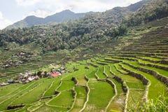 Πεζούλια τομέων ρυζιού Batad στην επαρχία Ifugao, Banaue, Φιλιππίνες στοκ εικόνα