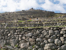 Πεζούλια Picchu Machu Στοκ εικόνα με δικαίωμα ελεύθερης χρήσης