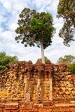Πεζούλι ελεφάντων, Ankgor Thom Στοκ Εικόνες