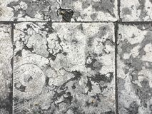 Πεζοδρόμιο πετρών πιάτων Στοκ εικόνες με δικαίωμα ελεύθερης χρήσης