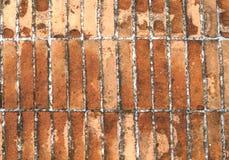 Πεζοδρόμιο τούβλου Στοκ εικόνες με δικαίωμα ελεύθερης χρήσης