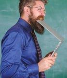 πεινασμένο άτομο γνώσης Δίψα της γνώσης Δασκάλων γενειοφόρο ατόμων υπόβαθρο πινάκων κιμωλίας lap-top δαγκωμάτων σύγχρονο Hipster στοκ φωτογραφία με δικαίωμα ελεύθερης χρήσης