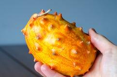 Πεπόνι Kivano φρούτων υπό εξέταση στο ξύλινο υπόβαθρο κλείστε επάνω στοκ φωτογραφία