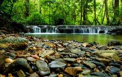 Περάστε την ημέρα με τη φύση στοκ φωτογραφίες