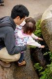 Περίεργα δίδυμα μικρών παιδιών με το στάλαγμα της υγρής λίμνης στοκ φωτογραφίες