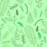 Περίκομψη floral άνευ ραφής σύσταση Doodle Στοκ εικόνα με δικαίωμα ελεύθερης χρήσης