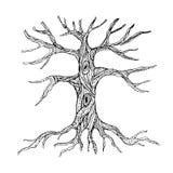 Περίκομψος γυμνός κορμός δέντρων με τις ρίζες διανυσματική απεικόνιση
