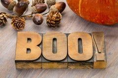 Περίληψη λέξης της Boo στον ξύλινο τύπο Στοκ εικόνες με δικαίωμα ελεύθερης χρήσης
