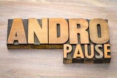 Περίληψη λέξης Andropause στον ξύλινο τύπο Στοκ Εικόνες
