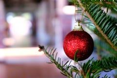 Περίληψη που θολώνεται του υποβάθρου χριστουγεννιάτικων δέντρων bokeh Νέο CE έτους Στοκ Εικόνα