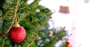 Περίληψη που θολώνεται του υποβάθρου χριστουγεννιάτικων δέντρων bokeh Νέο CE έτους Στοκ Εικόνες