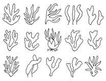 Περίληψη φυκιών στην απομόνωση γραμμικό σχέδιο ένα σύνολο αντικειμένων Στοκ Εικόνα