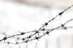 περίληψη barbwire Στοκ εικόνα με δικαίωμα ελεύθερης χρήσης