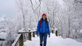 Περίπατοι γυναικών κατά μήκος μιας πορείας μεταξύ του όμορφου χειμερινού χιονισμένου τοπίου Σαφής ηλιόλουστος παγωμένος καιρός απόθεμα βίντεο