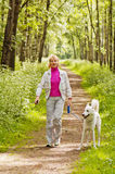 Περίπατοι γυναικών με ένα σκυλί Στοκ φωτογραφία με δικαίωμα ελεύθερης χρήσης