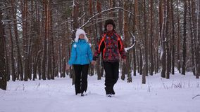 Περίπατοι ζευγών αγάπης στο χειμερινά χιονώδες δάσος και το γέλιο Ο άνδρας και η γυναίκα ξοδεύουν το χρόνο μαζί στο πάρκο το χειμ φιλμ μικρού μήκους