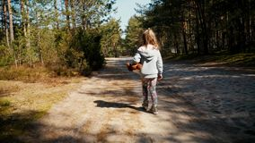 Περίπατοι κοριτσιών σε έναν δασικό δρόμο το καλοκαίρι απόθεμα βίντεο