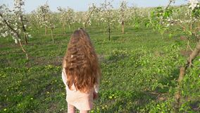 Περίπατοι μικρών κοριτσιών γύρω από τον οπωρώνα μήλων απόθεμα βίντεο