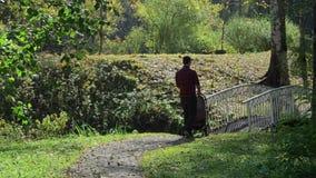Περίπατοι μπαμπάδων με έναν περιπατητή στο πάρκο απόθεμα βίντεο