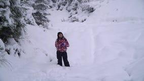 Περίπατοι οι νέοι γυναικών μόνο μέσω ενός χιονώδους δασικού νέου όμορφου τουρίστα γλιστρούν μέσω των κλίσεων χιονιού κοιτάζει γύρ απόθεμα βίντεο