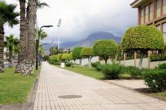 Περίπατοι στην οδό με τα όμορφα δέντρα στοκ εικόνα με δικαίωμα ελεύθερης χρήσης