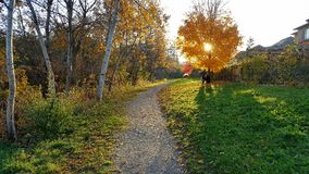 Περίπατος απογεύματος φθινοπώρου Στοκ Φωτογραφία
