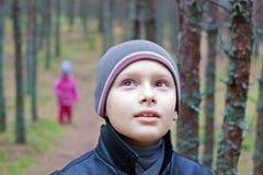 περίπατος δασικών δέντρων παιδιών στοκ φωτογραφίες