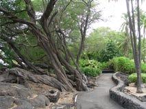 Περίπατος κήπων στοκ εικόνες με δικαίωμα ελεύθερης χρήσης