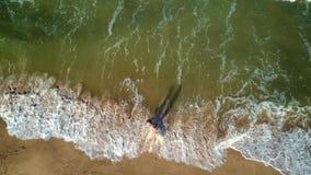 περίπατος κατά μήκος της ακτής φιλμ μικρού μήκους