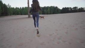 Περίπατος με το σκυλί στην παραλία απόθεμα βίντεο