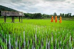 Περίπατος μοναχών στον τομέα ρυζιού πεζουλιών πέρα από το βουνό Στοκ φωτογραφία με δικαίωμα ελεύθερης χρήσης