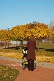 περίπατος μωρών φθινοπώρο&upsi Στοκ Εικόνες