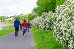 Περίπατος πάρκων άνοιξη Στοκ Φωτογραφίες