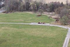 περίπατος πάρκων στοκ φωτογραφία