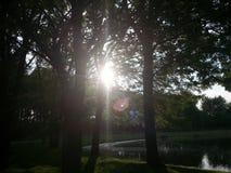 Περίπατος σε ένα πάρκο Στοκ φωτογραφίες με δικαίωμα ελεύθερης χρήσης