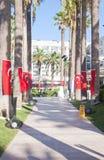 Περίπατος στην περιοχή με τις σημαίες της Τουρκίας στους φοίνικες Στοκ εικόνες με δικαίωμα ελεύθερης χρήσης