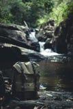Περίπατος στο δασικό φυσικό καταρράκτη Στοκ φωτογραφία με δικαίωμα ελεύθερης χρήσης