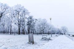 Περίπατος στο πάρκο της Μπρατισλάβα σε μια χιονώδη χειμερινή ημέρα, λυπημένο Janka KR Στοκ Φωτογραφία