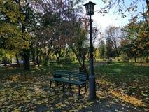 Περίπατος στο πάρκο στοκ φωτογραφίες με δικαίωμα ελεύθερης χρήσης